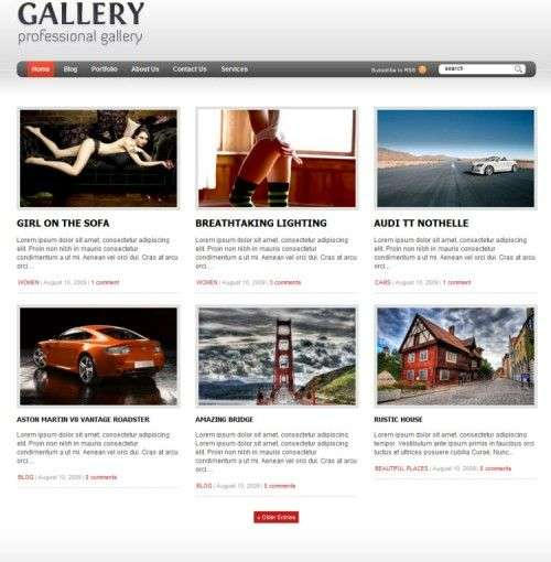 gallery wordpress theme - Wpzoom Premium Wordpress Themes
