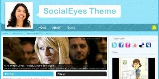socialeyes 550x275 - Modthemes Premium Wordpress Themes