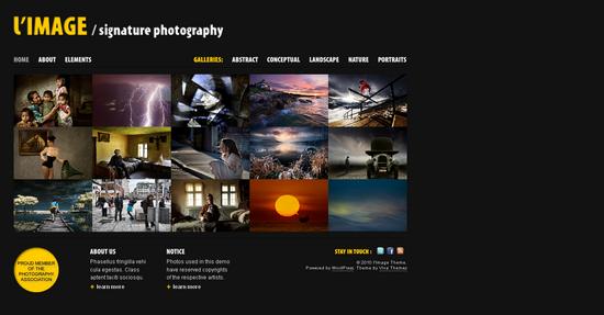 l image wordpress theme - L'Image Premium Wordpress Theme