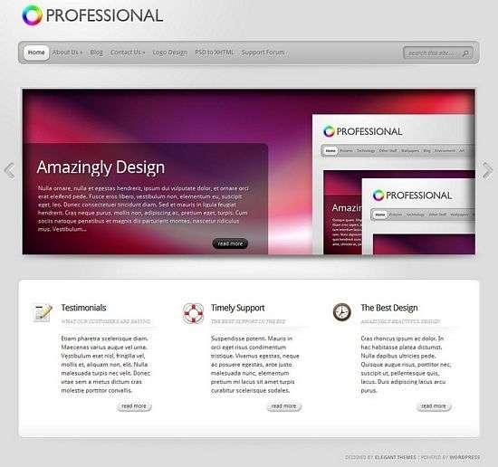 theprofessional wordpress theme - TheProfessional Premium WordPress Theme