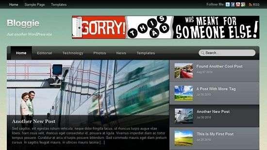 Bloggie - Themify Premium WordPress Themes