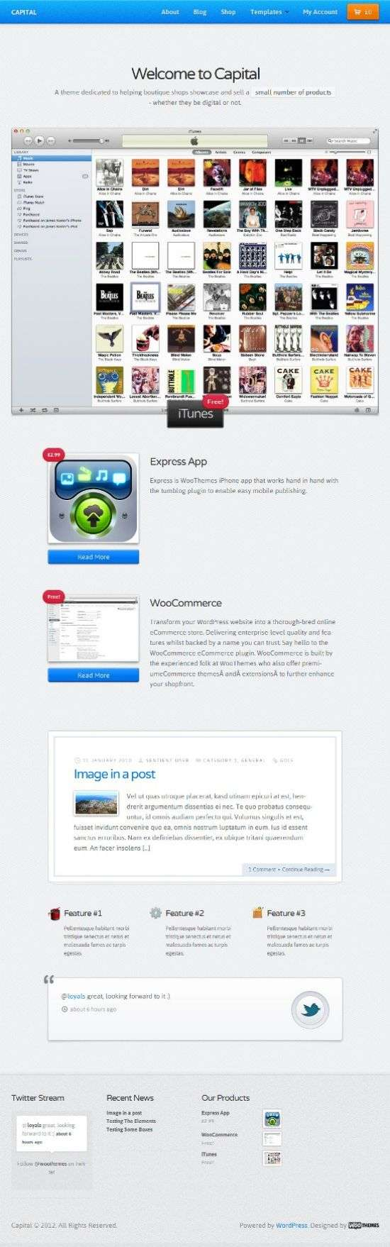woothemes capital avjthemescom 01 - Capital WordPress Theme