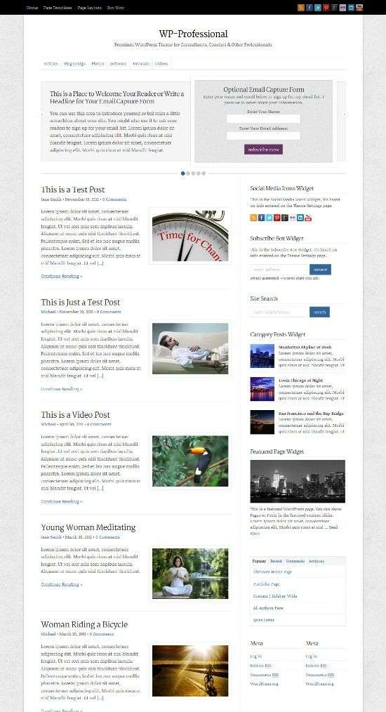 wp professional solostream avjthemescom 01 - WP-Professional WordPress Theme