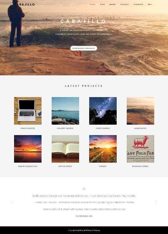 carajillo themejug avjthemescom 01 - Carajillo WordPress Theme