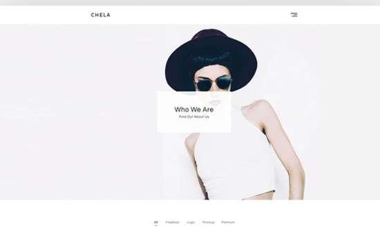 chela wordpress theme 01 550x342 - Top 20 Fresh Feminine & Minimal WordPress Themes