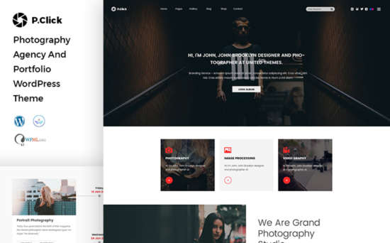 67384 big 550x342 - 15 Newest WordPress Themes For Photographers and Designers