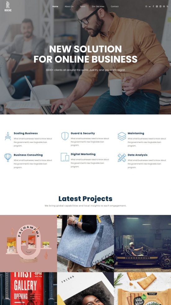 roche premium wordpress theme 01 550x978 - Roche Premium WordPress Theme